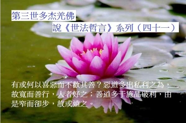 第三世多杰羌佛說《世法哲言》系列(四十一)
