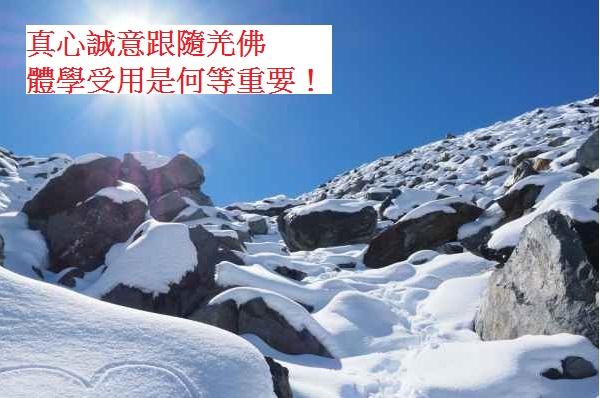 學習H.H.第三世多杰羌佛佛法-真心誠意跟隨羌佛體學受用是何等重要