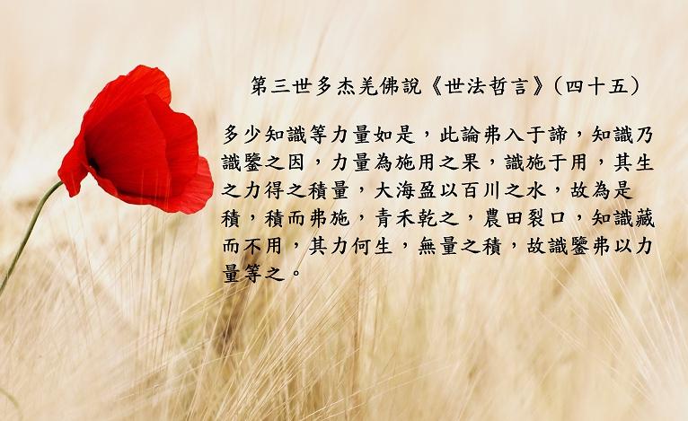 第三世多杰羌佛說世法哲言