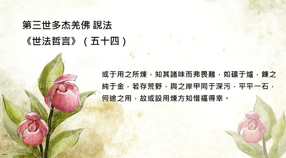 第三世多杰羌佛 說法《世法哲言》(五十四)