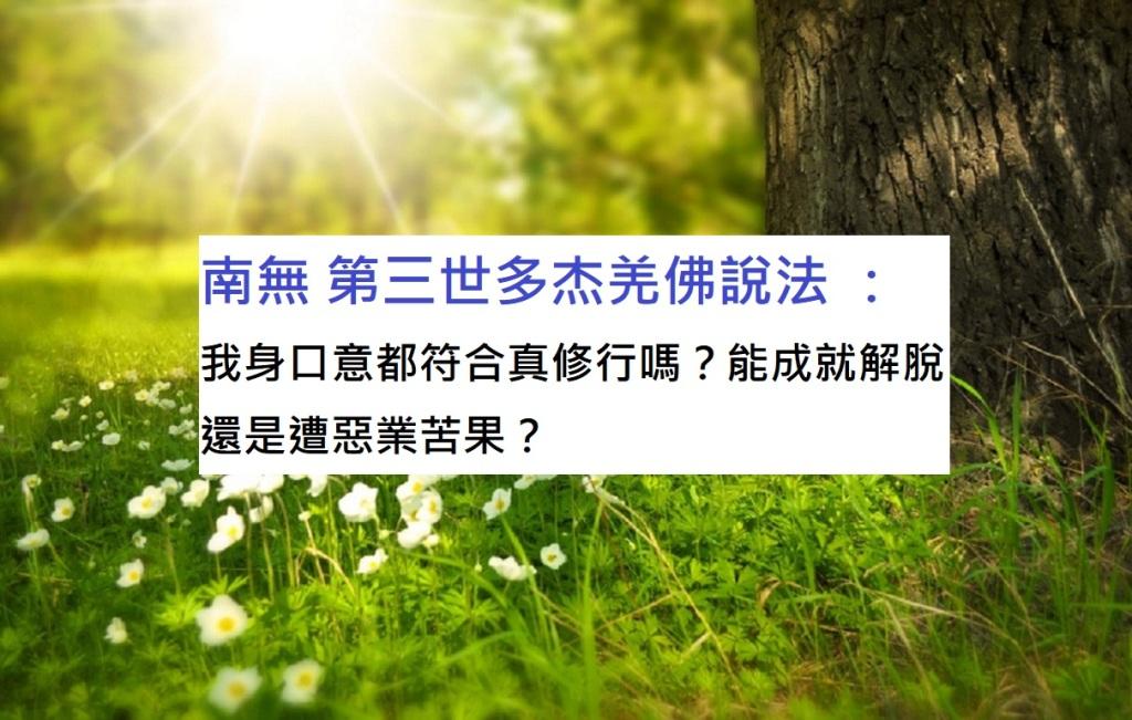 南無 第三世多杰羌佛說法 :我身口意都符合真修行嗎?能成就解脫還是遭惡業苦果?