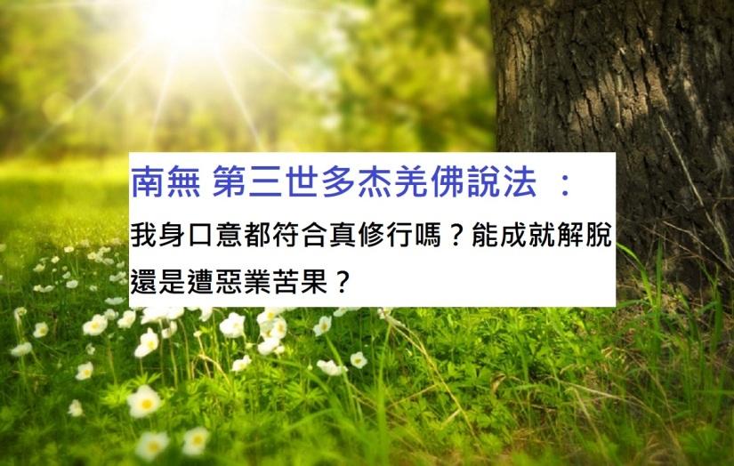 南無 第三世多杰羌佛 說法 :我身口意都符合真修行嗎?能成就解脫還是遭惡業苦果?