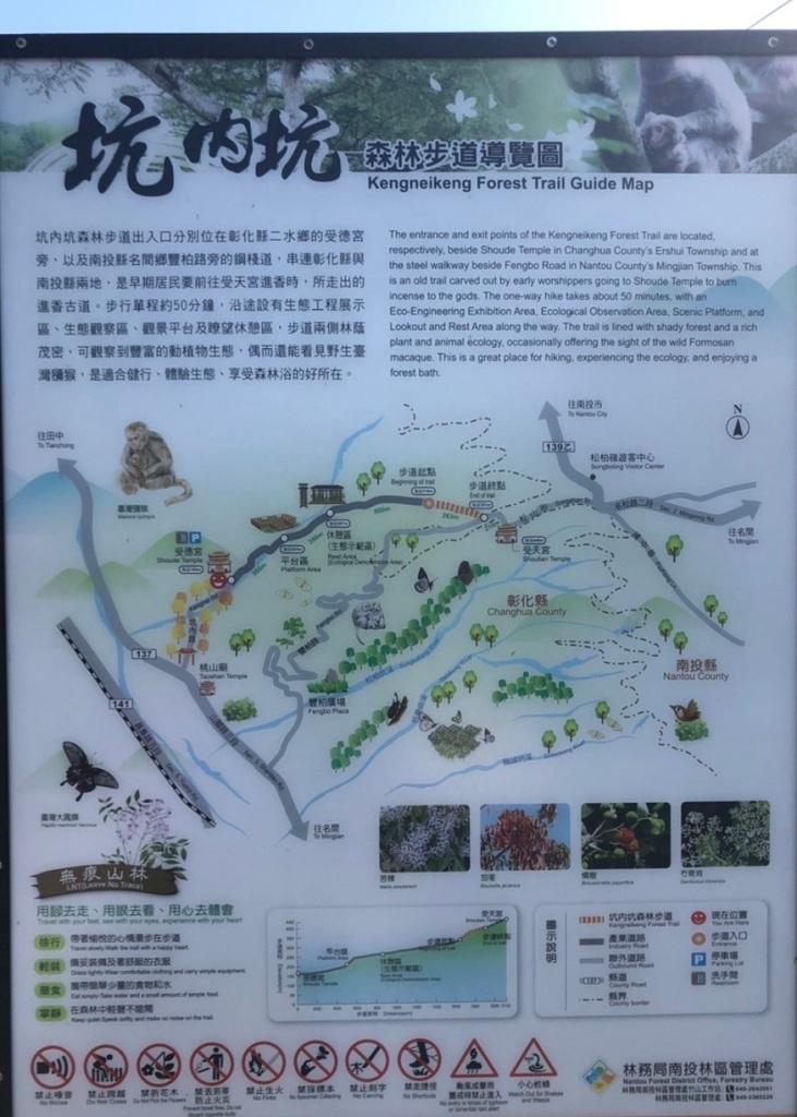 彰化二水坑內坑森林步道